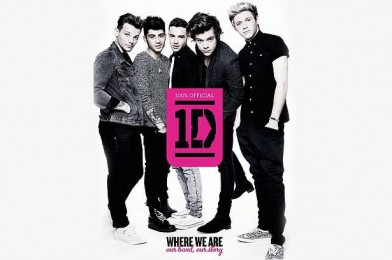 Onedirectionbook